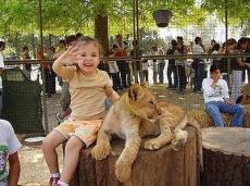 Kebun Binatang Paling Berbahaya di Dunia